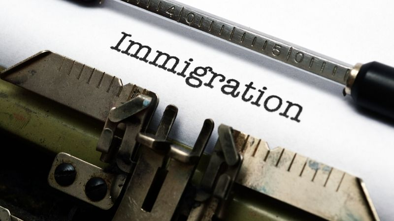 Individual Immigration law